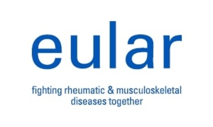 EULAR project on imaging to guide interventional procedures